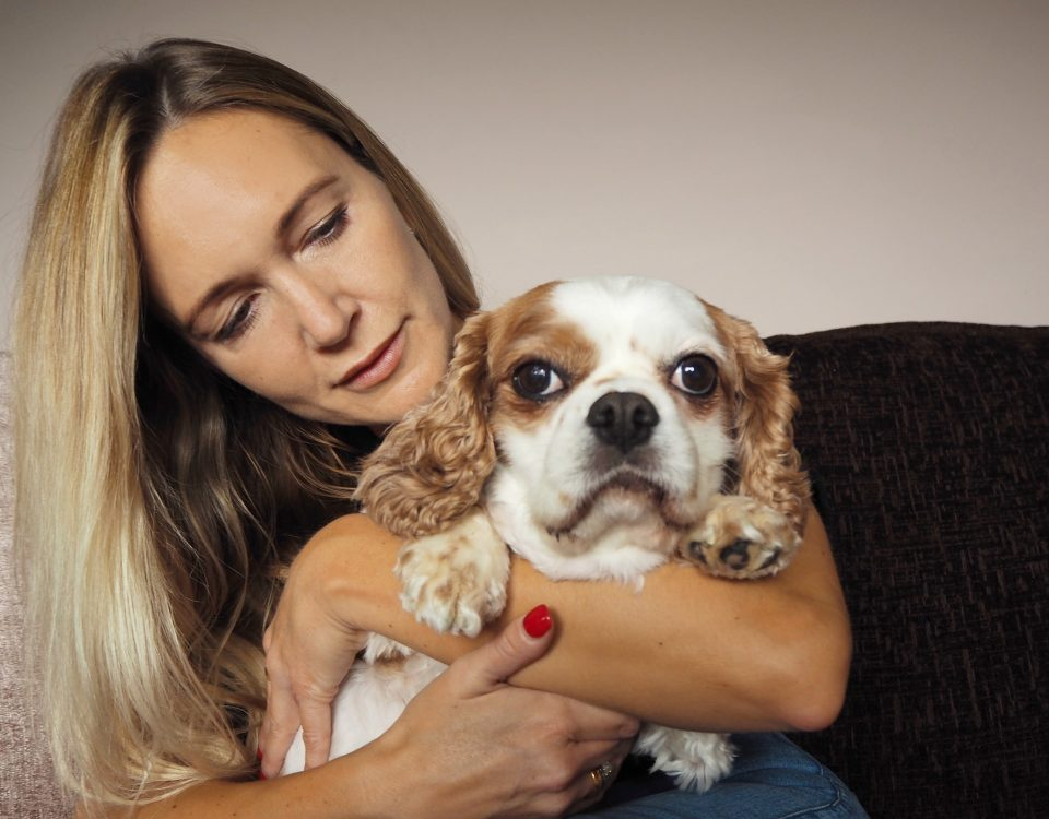 In-home Pet Euthanasia in the UK