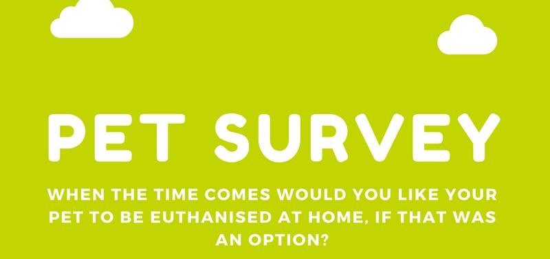 pet euthanasia survey cloud 9 vets