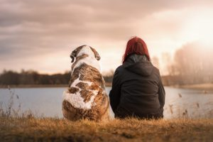 Pet Euthanasia and Saying Goodbye to Your Pet