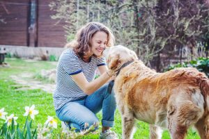 What is Chronic Kidney Disease in Dogs?