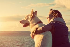 When is the Right Time For Dog Euthanasia?